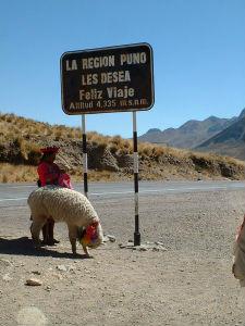 Baroud Pérou 3