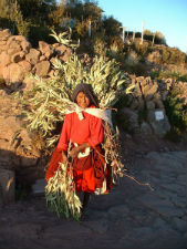 Baroud Pérou 8