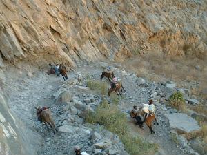 Baroud Pérou 19