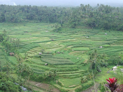 Indonésie 2008 24